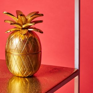 Pineapple quirky home decor