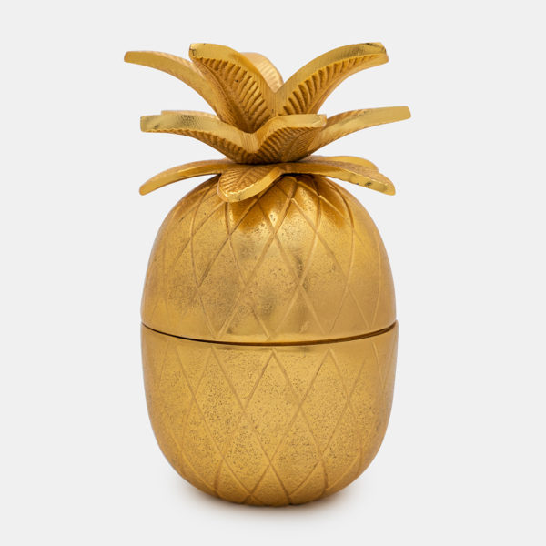 Pineapple quirky box