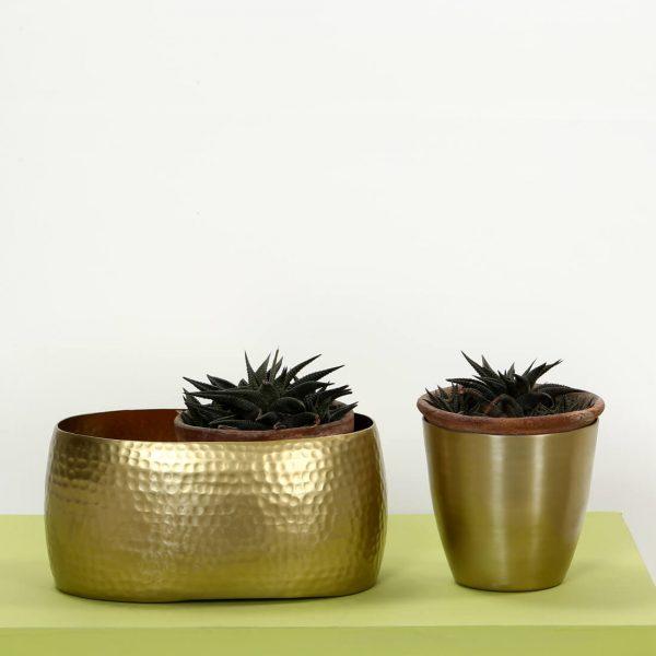 gold metal planter : topbrass