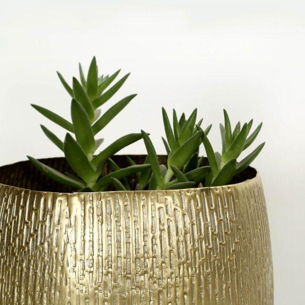 brass colour planter : topbrass