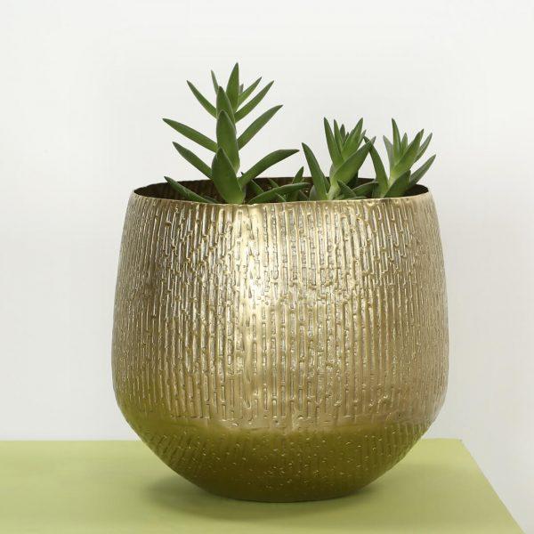 Metal planter indoors : Topp Brass